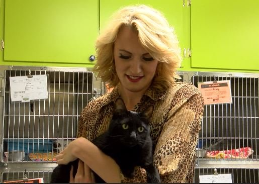 KULR-8's Melinda Lee with Yellowstone Valley Animal Shelter cat, Zoey