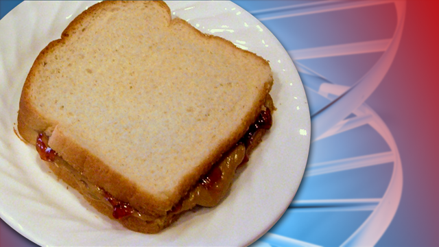 Man charged after DNA found on sandwich at burglary scene
