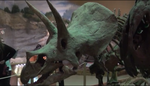 Wyoming Dinosaur Center's new digs