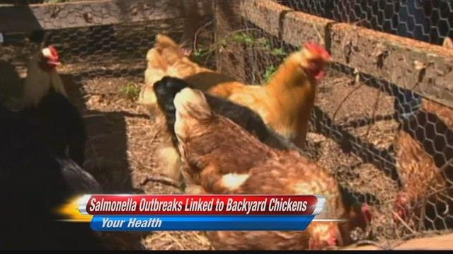 Salmonella outbreak reaches 14 more people in Montana