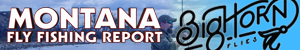 Montana Fly Fishing Report