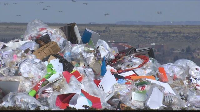 Bag your trash, keep our city green | KULR 8