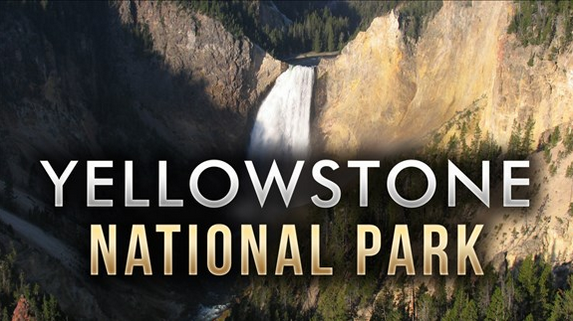 Yellowstone Wants Brucellosis Quarantine Facility In Park
