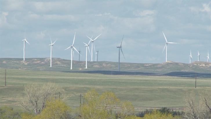 Wind turbines kill birds and bats | KULR 8