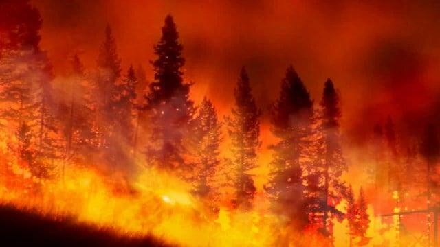 Montana Wildfire Costs Abc Fox Montana Local News Weather Sports Ktmf Kwyb